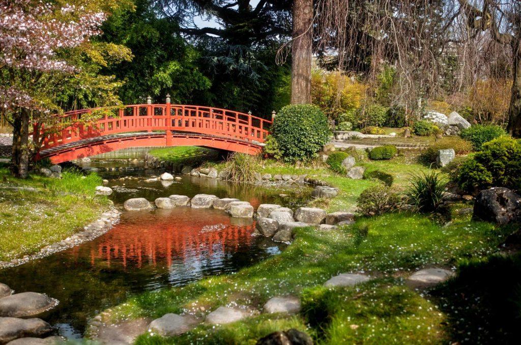scorcio del giardino giapponese all'interno del museo albert khan a Parigi.