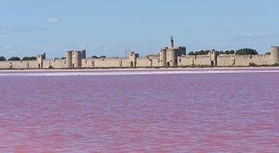 Tour Guidato nelle saline rosa di Aigues Mortes