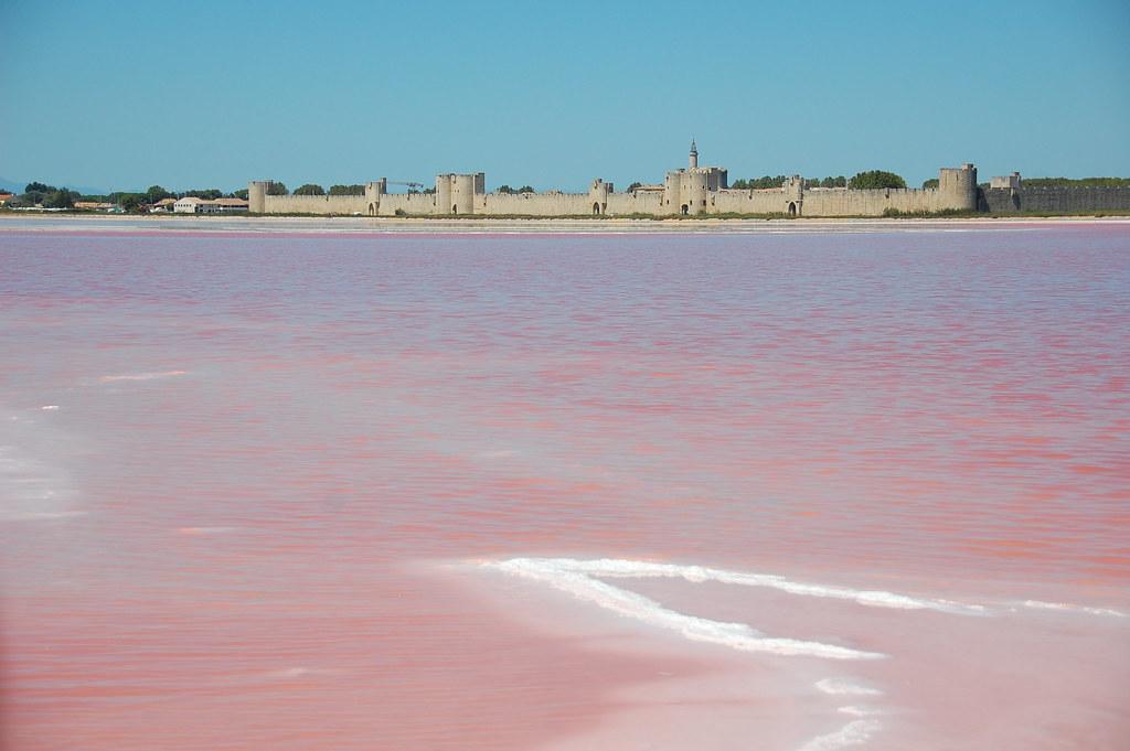 Saline rosa a Aigues Mortes