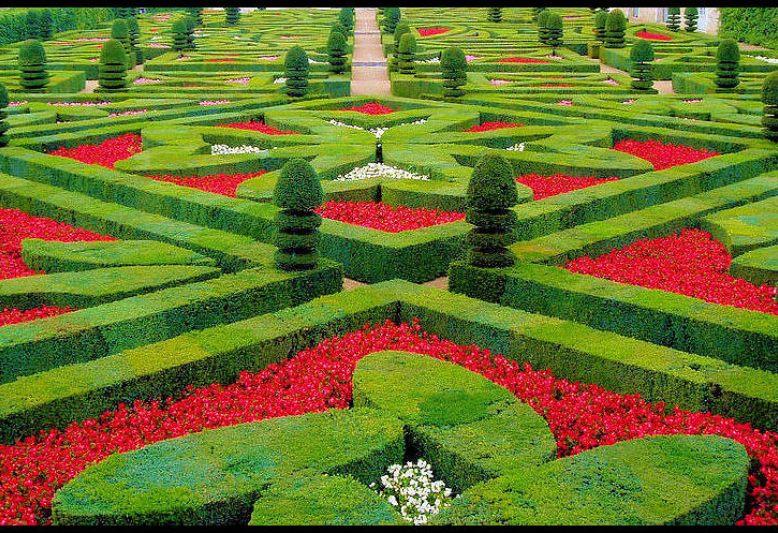 giardini con fiori rossi nel castello di villandry